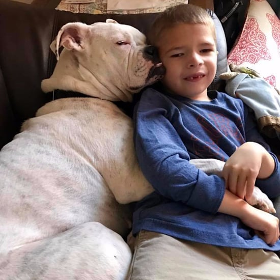 Facebook Post About Non Verbal Boy and His Deaf Dog