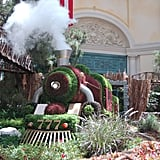 Bellagio's Conservatory and Botanical Gardens