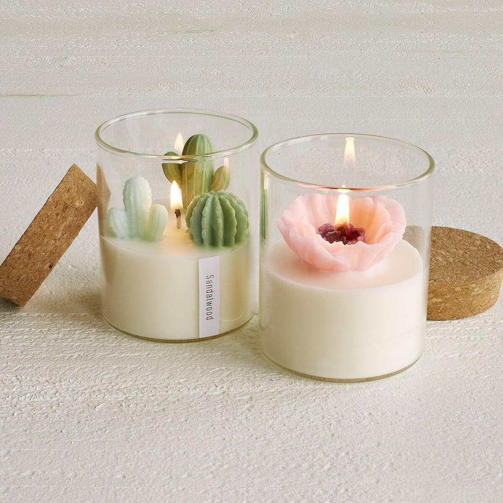 Terrarium Candles