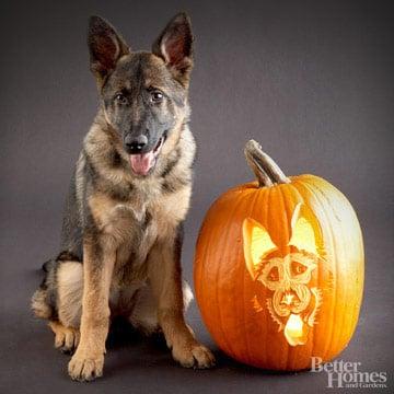 German Shepherd Downloadable Dog Breed Pumpkin Stencils