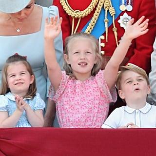 كم عدد أبناء أحفاد الملكة إليزابيث الثانية؟