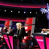 The Coaches From The Voice