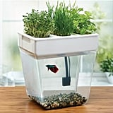 Self-Cleaning Fish Tank With Garden