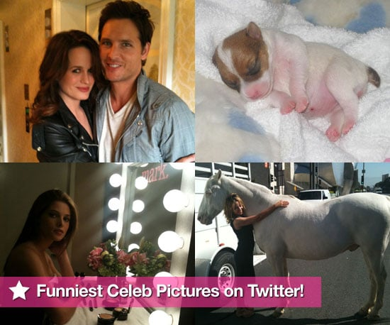 Pictures From Celeb Twitter Accounts Including Paris Hilton, Russell Brand, Emma Bunton, Tom Cruise and More 2010-06-17 07:00:00