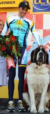 Saint Bernards Greet Tour De France Leader