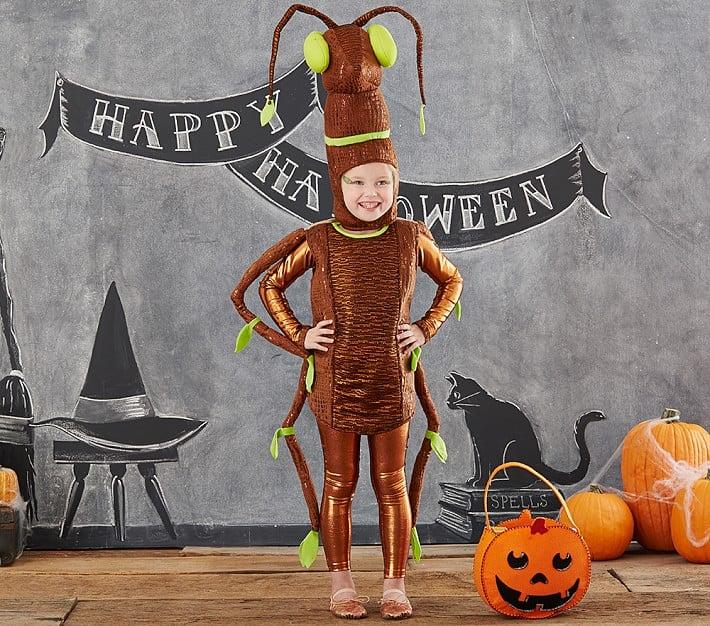 Pottery Barn Kids Costumes Popsugar Moms
