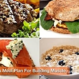 "<a href=""http://www.fitsugar.com/Food-Good-Building-Muscle-7156685"">A Meal Plan For Building Muscle</a>"