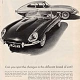 """The """"different breed of cat"""" slogan makes an appearance in this Jaguar ad."""