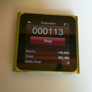 Do You Wear a Pedometer Daily?