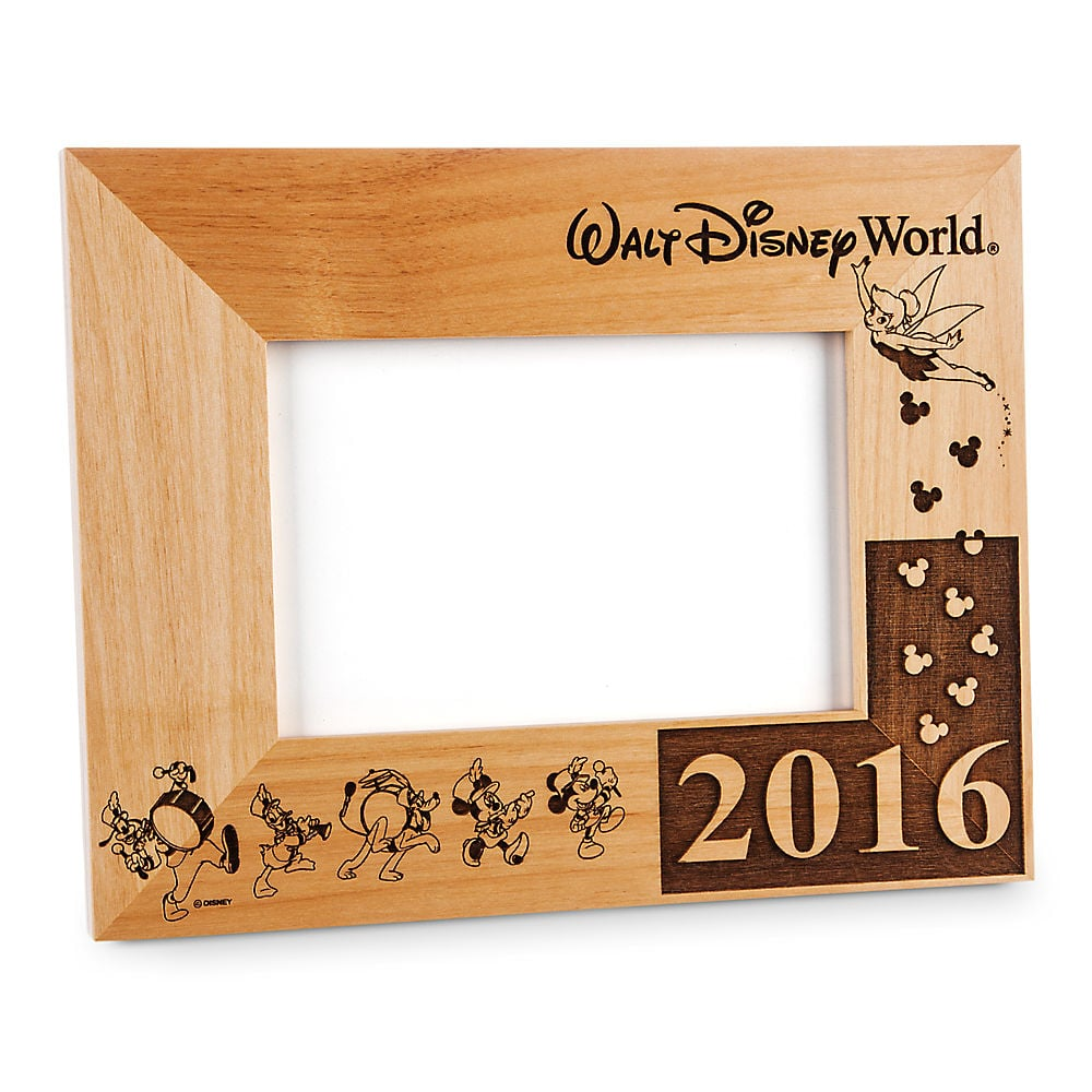 Disney Walt World 2016 Frame