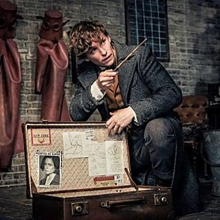Fantastic Beasts and Harry Potter Timeline
