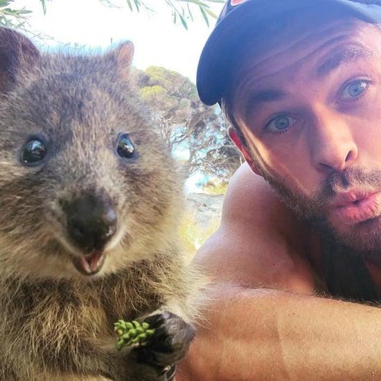 Chris Hemsworth With Quokka Animals in Australia March 2019