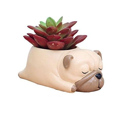 Cuteforyou Pug Succulent Pot