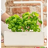Click & Grow Smart Garden Hydroponic Unit