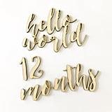 BlessedBlondies Monthly Milestone Wood Cutouts