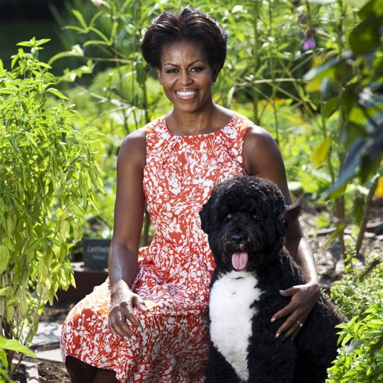 Michelle Obama and Bo official photo