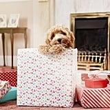 A Box of Christmas Cheer