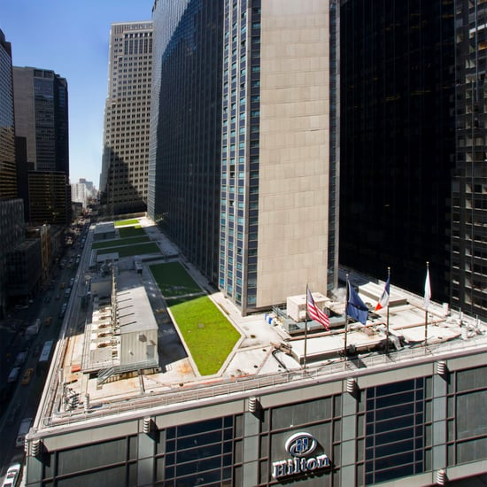 New York Hilton Downtown Review