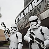 Stormtroopers will patrol the grounds at all times.