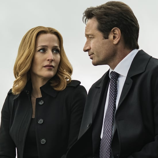 Will There Be More Episodes of The X-Files?