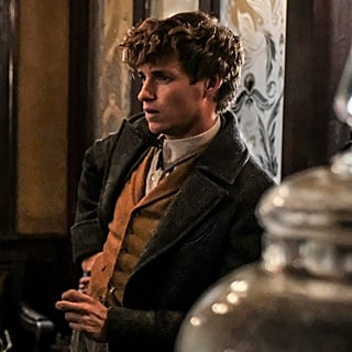 Fantastic Beasts: The Crimes of Grindelwald Interviews 2018
