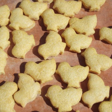 Easter Treats For Pets