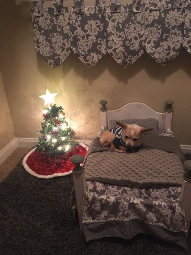 "Betsy Redfern, a 20-year-old college student from Mississippi, is the definition of a doting dog mom. After moving into a new apartment with an extra closet, she did what any hardcore pet mama would do: she made an adorable bedroom for her 12-year-old chihuahua, Cupid, using the extra space. And honestly, it's so stinking cute we wish we thought of the idea first. After heading out to college for her freshman year, Betsy quickly began to miss her best friend who's slept in her bed since the third grade. She told POPSUGAR just how difficult her time without her four-legged friend was.  ""When I moved to college my freshman year was very hard because I lived in the dorms and was constantly getting homesick,"" she said. ""After my freshman year I was able to get an apartment and bring Cupid to school with me! The apartment happened to have a master bedroom, so it had two closets. I didn't need the second closet, but needed somewhere to keep Cupid. So I decided to give Cupid a little space of his own and decorate it for him. He shares his room with my 5-year-old turtle, Caru."" Yup, that's right, Cupid and Caru are bunk mates. As if the story couldn't get any cuter.  Betsy didn't waste any time getting creative with her pooch's new digs, drawing a little inspo from her own room. She started by repurposing an old baby doll bed and then enlisted her mom for some help in the crafting department. ""I decided to repaint the old bed I got from Santa Claus years ago and use it for Cupid. His linens were made to match my bed covers and skirt, and were sewn by my mom.""  But the most adorable part of the whole project? The tiny Christmas tree she set up in the corner. Betsy explained that she decided to spread her love of the Christmas season to her pets' room this year for just a few bucks. ""I found the tree and the star-topper at Dollar Tree, and the ornaments at Target. I think it cost at most $15 for me to do! It was so cute!"" Although the newly remodeled closet is what pet owners' dreams are made of, it also has a practical purpose, too. ""Cupid's room has been so great because I am able to put a baby gate up and keep him in there when I go to class so I know he is safe and cozy.""  Scroll through to soak up all the cuteness.       Related:                                                                                                           You Probably Haven't Seen Anything More Amazing Than This Chihuahua-Size Bedroom"