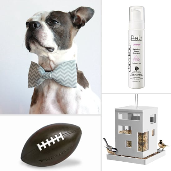 Best Pet Products For January 2013