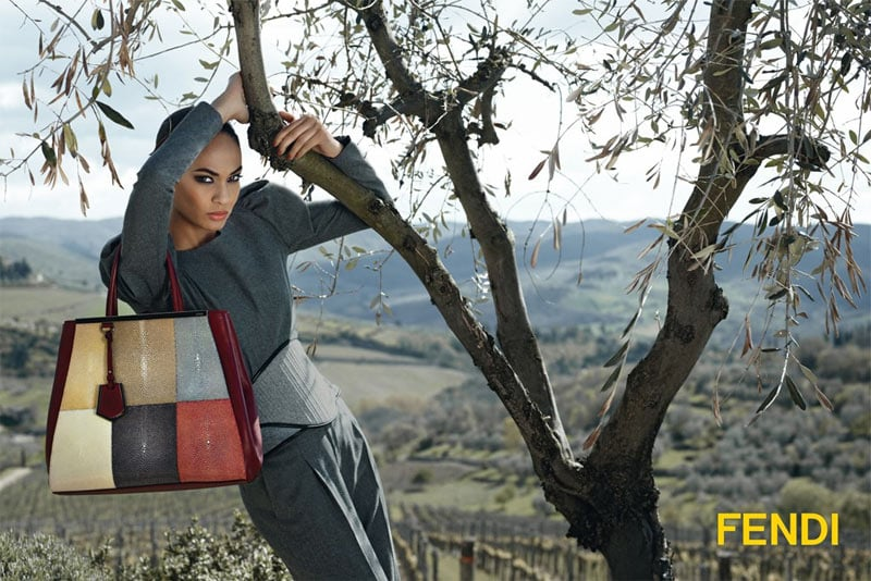 Karl Lagerfeld shot Fendi's Fall ads.