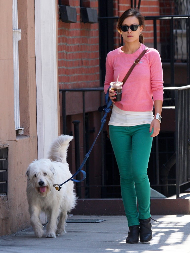 Olivia Wilde held an iced drink during her NYC walk with her dog, Paco.