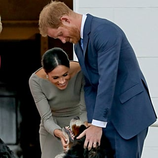 What Did Prince Harry and Meghan Markle Name Their Dog?