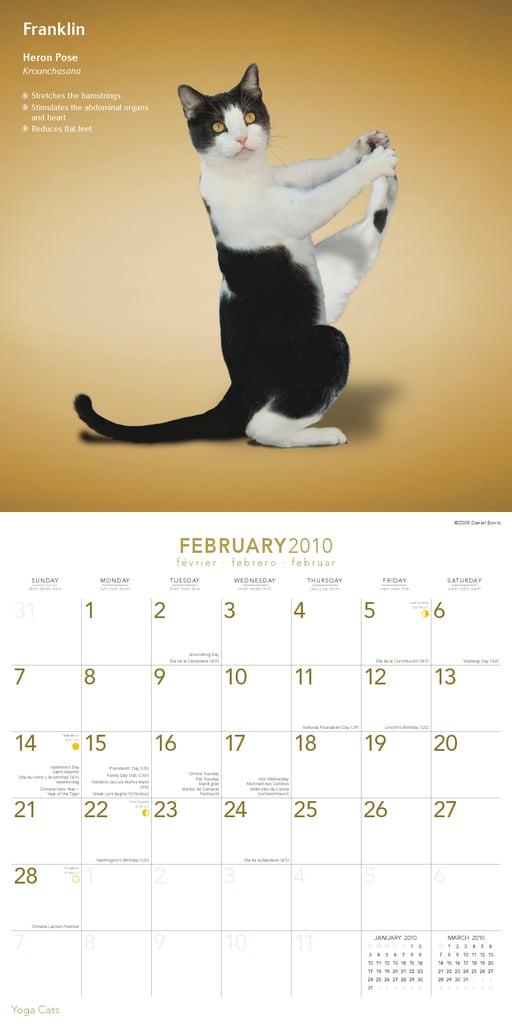 February —Heron Pose