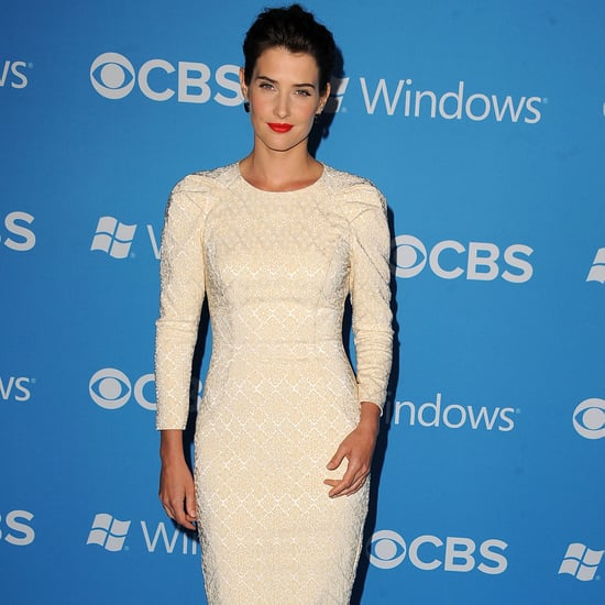 Cobie Smulders and Neil Patrick Harris at CBS Party