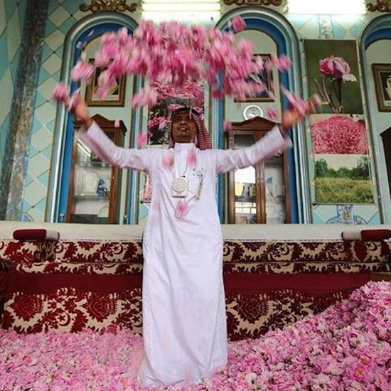 صور تبرز جمال المملكة العربية السعودية