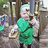 Link From Legend of Zelda