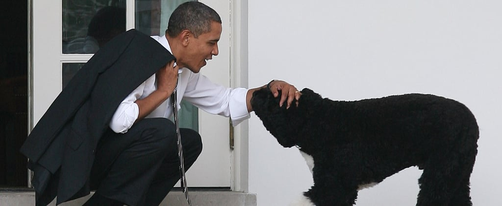 30 Times Bo and Sunny Obama Were the Coolest Members of Their Family