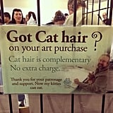 Free cat hair? What a steal!