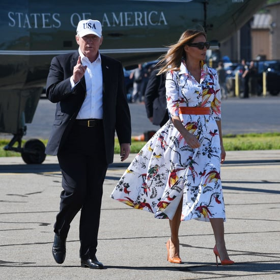 Melania Trump's Kasia Parrot Print Dress