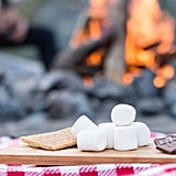 Make S'mores on a Fire