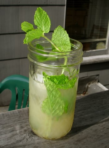 Instead of the traditional take on a rum-filled spirit, this lemonade mojito opts for vodka instead.