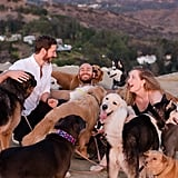 Man Proposes to His Girlfriend With 16 Dogs