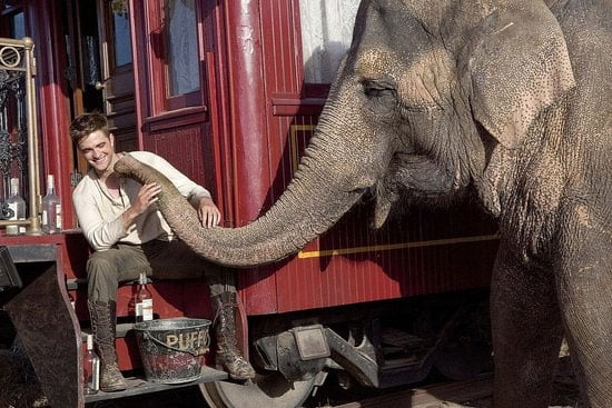 More Water For Elephants Photos