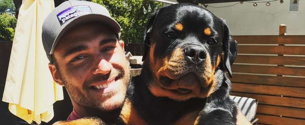 Bachelor in Paradise's Ben Zorn Has the Cutest Rottweiler You've Ever Seen