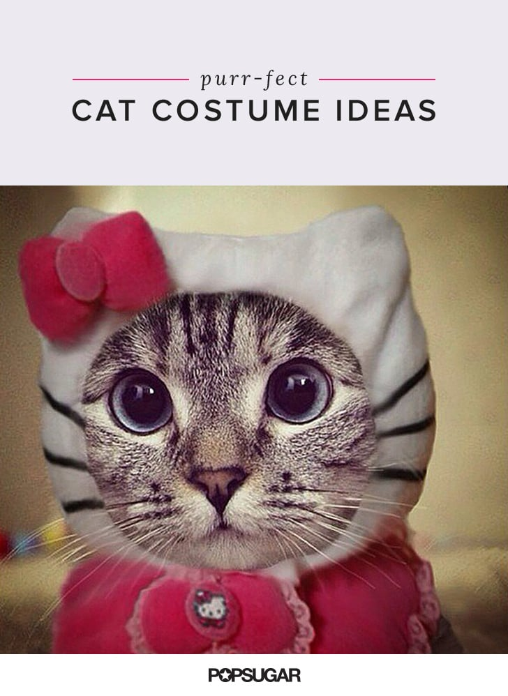 & Funny Cat Costumes | POPSUGAR Tech