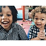 Cree and Aden