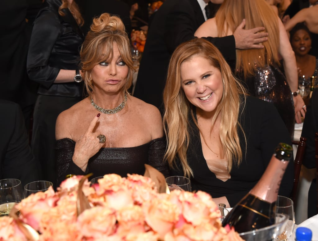 Snatched costars Goldie Hawn and Amy Schumer got silly inside in 2017.