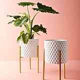 White Geometric Ceramic Planter With Golden Stand