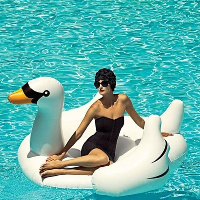 Why The Giant Inflatable Swan Is The Most Stylish | POPSUGAR Home Middle  East