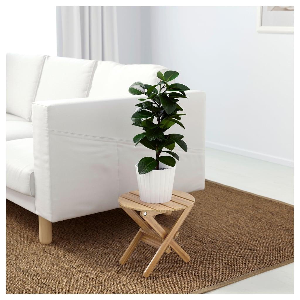 Vildapel Plant Stand