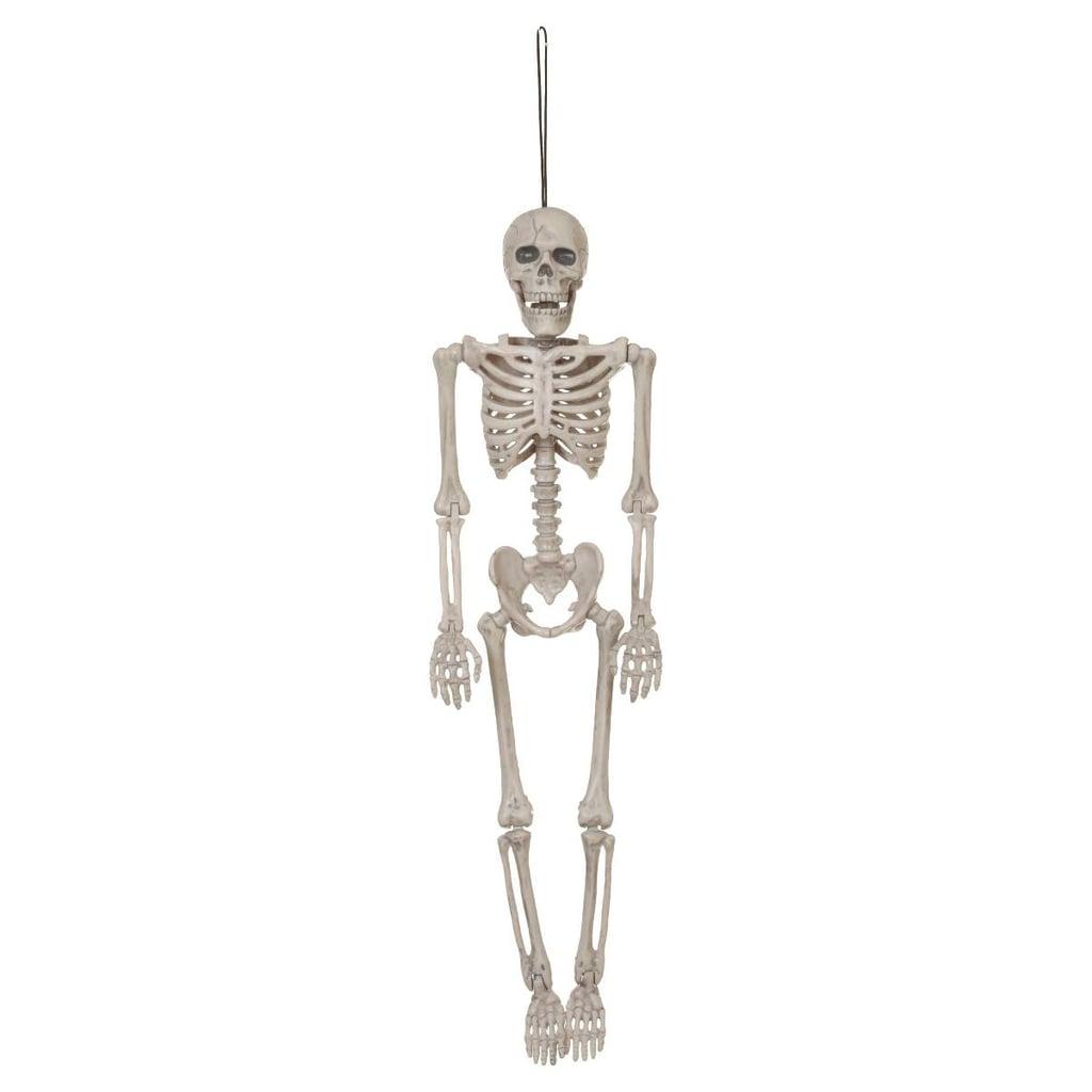 Hanging Posable Skeleton
